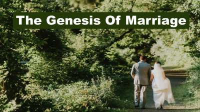 Family Focused - The Genesis of Marriage